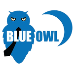 blueowl.us logo